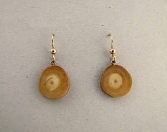 Sterling Silver Alaskan Fossil Ivory Earrings