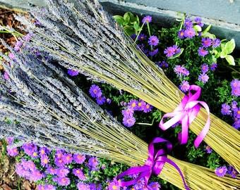 Rustic dried lavender simple bouquet , wedding decor, vintage, country, home decor. Grosso lavender. Bride's or Bridesmaid.