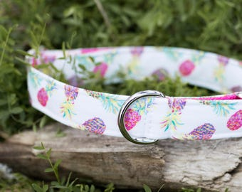 ECO CANVAS Pineapple Dog Collar, Hiking, Outdoor, Adventure, Pink Collar, Female Collar, Waterproof Collar, Buckle Collar