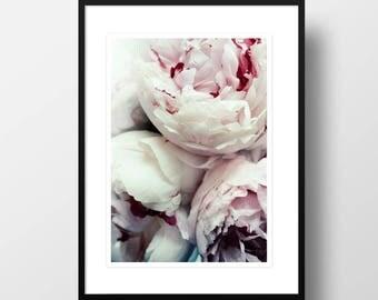 """Artprint """"Pfingstrosen"""""""