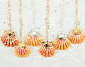 Electroformed Sunrise Shell Necklace, Hawaiian Shell Necklace, Hawaiian Shell Jewelry, Sunrise Shell Jewelry, Sunrise Shell Necklace