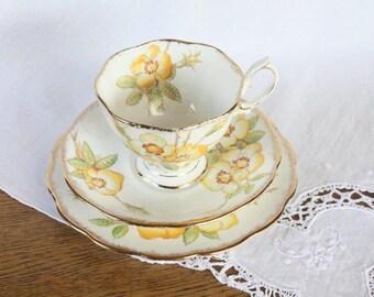 Royal Albert Trio ~ Bone China Teacup Saucer Plate ~ 'Wild Rose' Teacup Set Gift for Her
