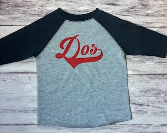 Dos Baseball birthday shirt, 2nd birthday shirt, boys birthday shirt,  baseball t-shirt, baseball birthday party, baseball party, baseball