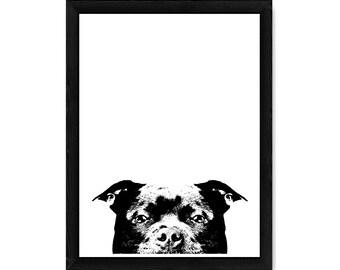 Staffordshire Bull Terrier PRINT