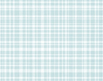 Frame Color #42 Blue Plaid - Do Not Purchase This Listing