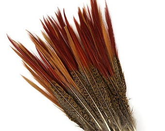 """1 GOLDEN Natural Pheasant Feathers RED TIPS 4""""-12"""""""