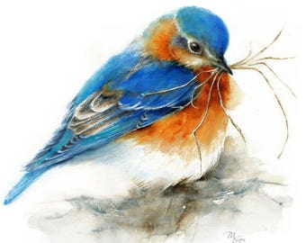 Eastern Bluebird watercolor painting  - Giclee Print. Bird Art. Nature or Bird Illustration, Blue and Orange.