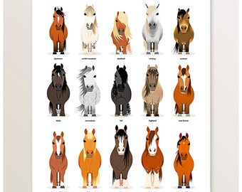 Horse Breeds, Farm Animals, British Livestock, Pony Variations, Modern Breeds Poster