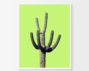 Cactus Print Green Wall Art Nature Poster Desert Art Large Printable Poster Digital Download Southwestern Decor Cacti Photograph Minimalist