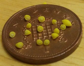 Two 1/48th Quarter scale Halved lemon with segments