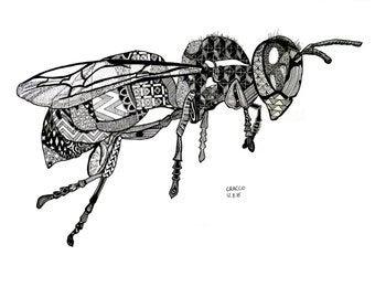 WASP (original animal illustration of an insect, patterns and black ink) Print