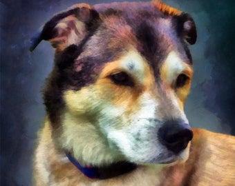 Custom Pet Portrait, Dog Portrait, Digital PET PAINTING from your photo, Pet Memorial, Free Shipping!