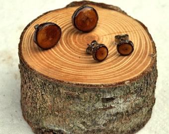 Wooden Stud Earrings, Douglas Fir Wood Earrings, Eco Resin Jewelry, Wood Slice Jewelry, Natural Wood, Tree Slice Earrings, Woodland Jewelry