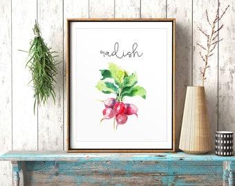 Kitchen Decor, Radish, Cook Printable, Kitchen Wall Art, Food Painting, Restaurant Decor, Watercolor Print, Vegetables Printable, Veggies