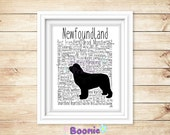 Newfoundland Print Art Work Typography On A4 Top Quality Card 10x8