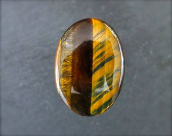 HIGH SHEEN Tiger eye cabochon. Large.