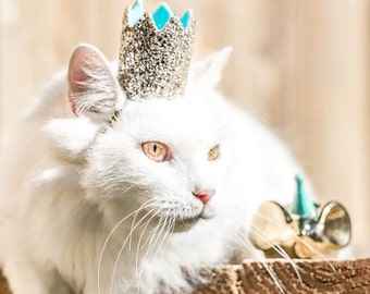 Kitty Crown    Cat Birthday Crown Hat    Animal Birthday Hat