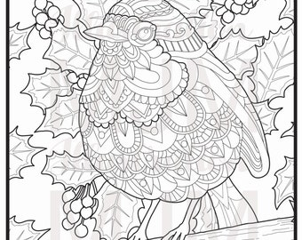 Printable Decorative Robin Red Breast Instant download adult colouring page