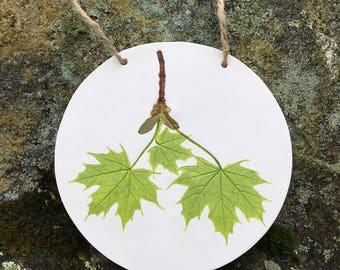 Maple leaf wall hanging, home decor, botanical imprint, leaf print, impression, nature ornament