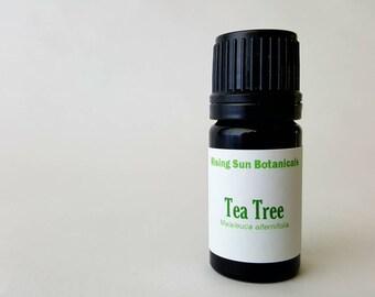 Tea Tree (Malaleuca alternifolia) Organic Essential Oil Anti Viral Anti fungal Australian Tea Tree Oil