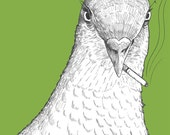 Pigeon Print    Bitter Birds    funny bird from original pencil drawing, animal smoking cigarette, angry bird, quirky weird art, green