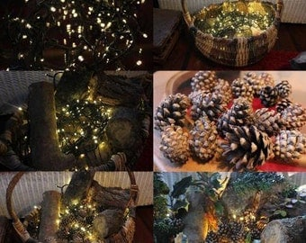 Christmas and Thanksgiving Decorations