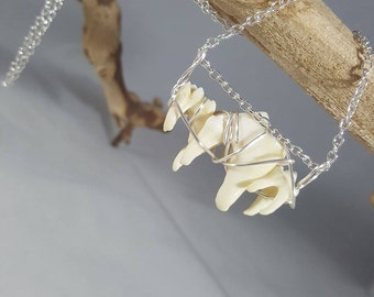 Real Coyote & Raccoon Molar Wire-Wrapped Necklace / Authentic Taxidermy Jewelry