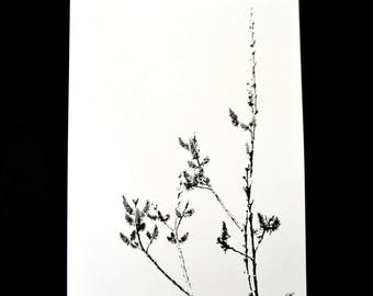 Art print-reproduction of ink drawing done by hand with brush