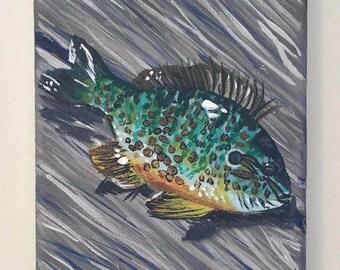 A Colourful Catch