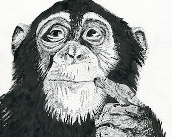 Thoughts of a Monkey - 8x10 Copy - 2012 - ADawningMissionArt