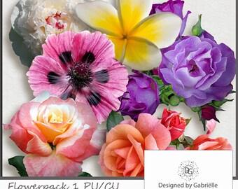 Digital Scrapbooking Flowerpack 1 CU ok