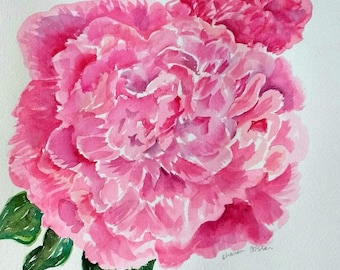Peony watercolor painting original, 10 x 10 flower art, Peony watercolor art, peony painting SharonFosterArt, floral watercolor