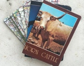 Slim Wallet- Vintage Texas maps & postcards- Choose 1