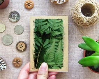 Green Fern Notebook - Nature Series 09 - Greenery Leaf Plant Nature Pocket Journal (NB-NATR-09)