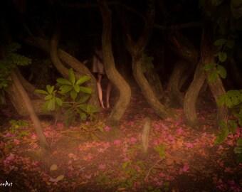 Horror Print - Woodland, Scary Trees, Faery, Fairy, Ghost girl, Trees, A3,Horror Scene,Dark Print,Digital Art,Horror Art,Dark Art