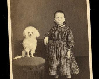 1860s CDV Photo Little Girl with Poodle Dog - Hazleton Pennsylvania