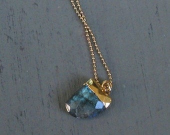 Beautiful Labradorite Horn/Tooth - Gold, Ball Chain