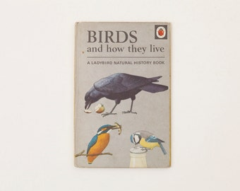 Birds and How they Live - Vintage Ladybird Book, Series 651, 1970s