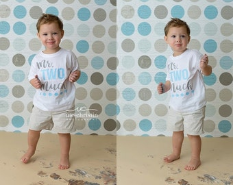 2nd Birthday Shirt Boy, 2nd Birthday Outfit Boy, Two Year Old Birthday Shirt, Second Birthday Boy Gift, Mr Two Much - Shirt Only