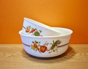 Arcopal - France - Set of two large bowls