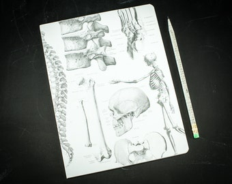 Skeleton Anatomy Softcover Notebook   Dot Grid Journal, Bullet Journal, Recycled Paper, Nursing Student, Skull, lab notebook, science