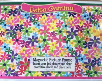Delta Gamma Magnetic Picture Frame