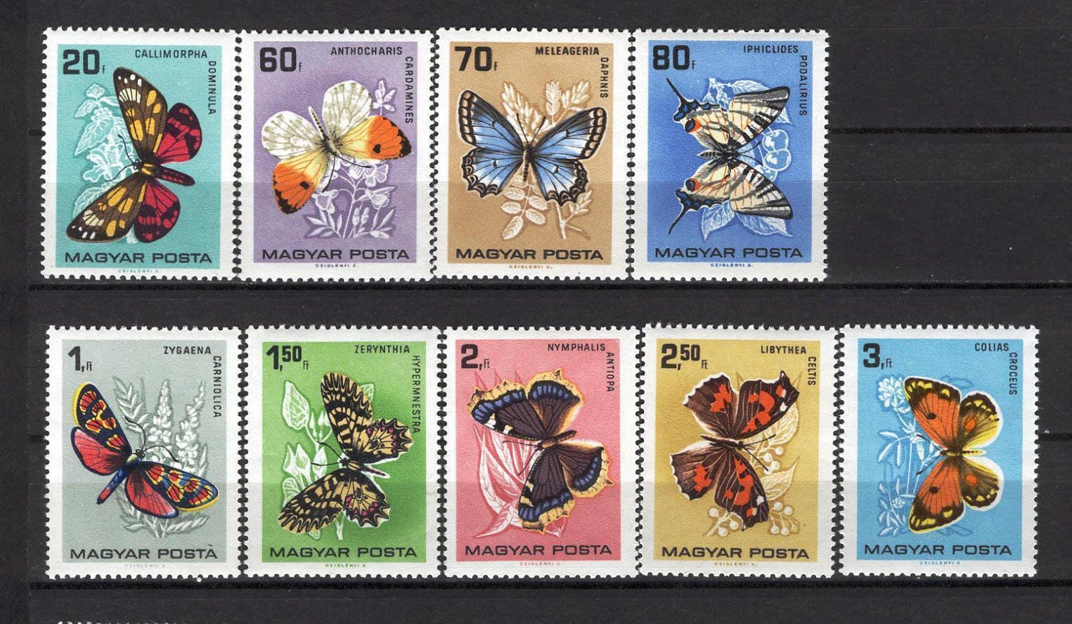 Vintage Butterfly Stamps From Hungary 1966 Postage For