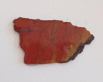 Petrified Wood Slab - Lapidary Slab - Natural Stone Slab - Lapidary Rough