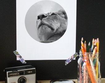 Lion Print, Scandinavian print, photography, black white poster, modern print, minimalist print, wall art print, circle photo, modern decor
