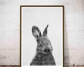 Woodland Animals, Baby Woodland Decor, Woodland Creatures, Baby Rabbit Print, Kids Room Woodland, Wooden Print Hanger, Woodland Theme Decor