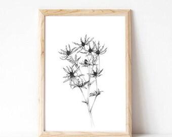 home decor, botanical print, black and white, art prints, wall decor, modern, minimalist print, giclee