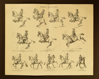 1905 Horsemanship, an original antique print from 1905, a lithography presenting technics and poses of horse riding.