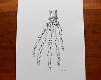 Skeleton Hand Print