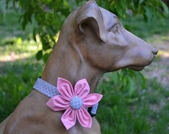 Flower Dog Collar